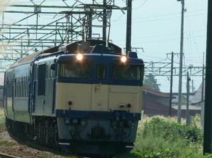 P11004561