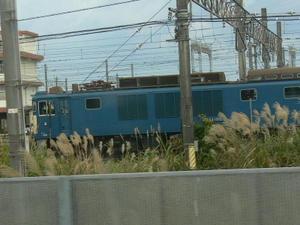 P11107671