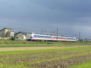 P11109551