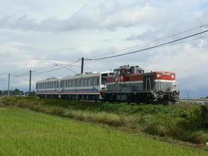 P11109881