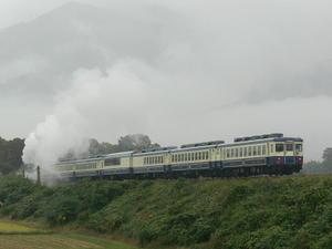 P11201231