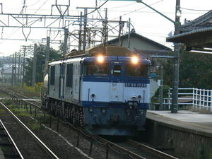 P11201901