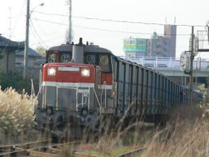 P11208851