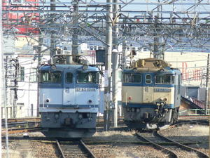 P11303331