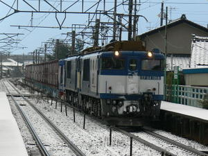 P11305181