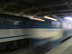 P11305401