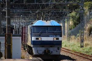 Dsc_02081