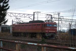Dsc_16551