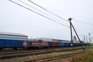 Dsc_65311