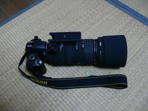 P11305711