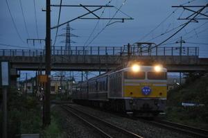 Dsc_00631