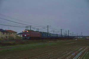 Dsc_47141c