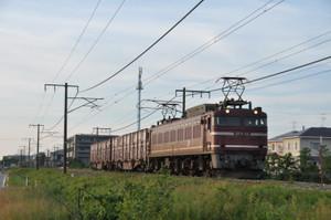 Dsc_6698_1946