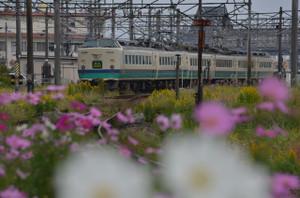 Dsc_5711_mini