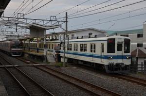 Dsc_6257_mini