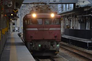 Dsc_9250_mini