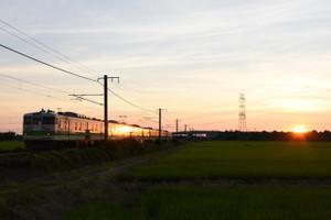 Dsc_0019_mini
