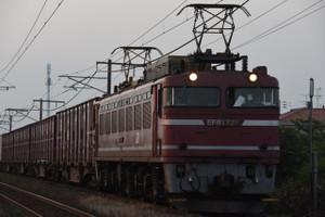 Dsc_1648_mini