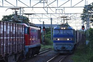 Dsc_8074_mini