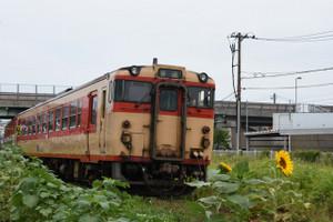 Dsc_2053_mini