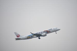 Dsc_2520_mini