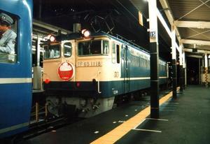 el65011981