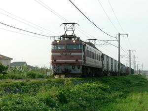 P10105101