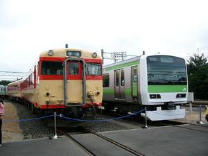 p10105131