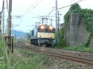 P10205561