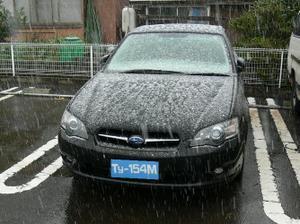 P1040066_x
