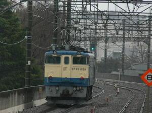 P10501691