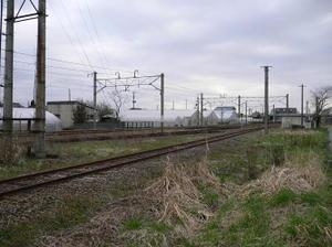 P10603561