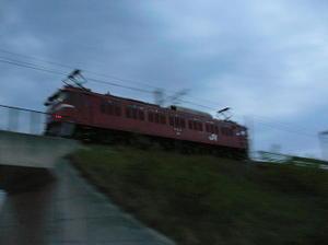 P10605261_1